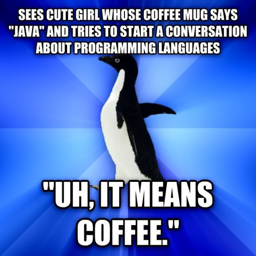 socially awkward penguin,java,relationships,coffee,dating