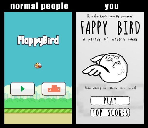 flappy bird faptimes - 8084884224