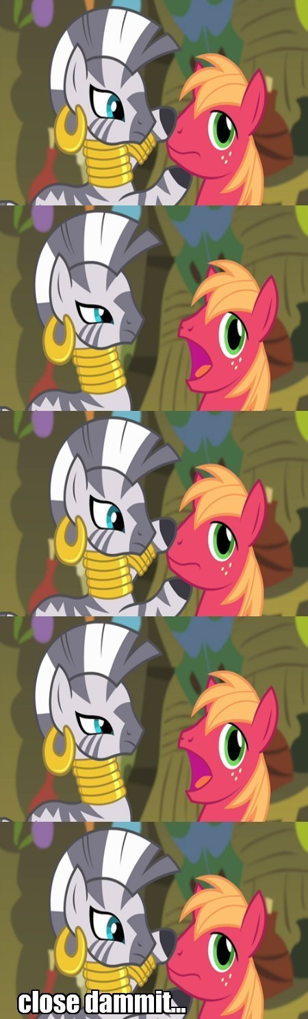 shut your mouth,zecora,Big Macintosh