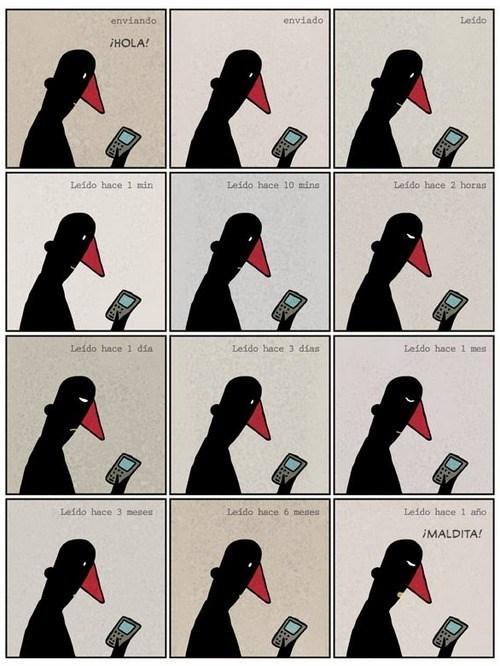 viñetas Memes - 8085374976
