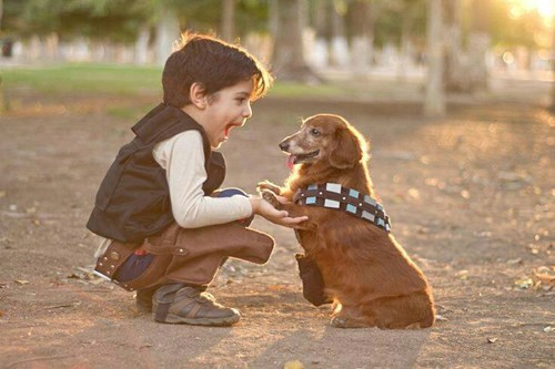 cosplay star wars kids chewbacca Han Solo