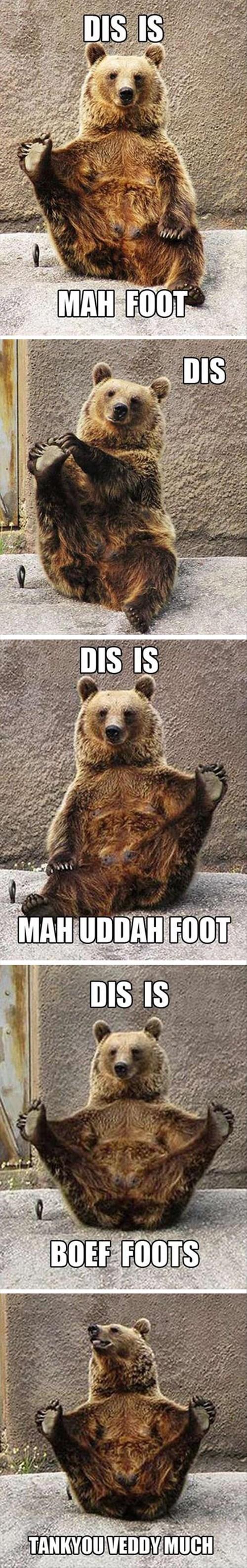 bears feet funny - 8085427968