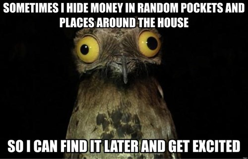 peculiar potoo,money