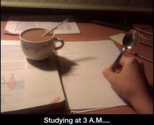 studying,spoon,pens,sleeping,funny,g rated,School of FAIL