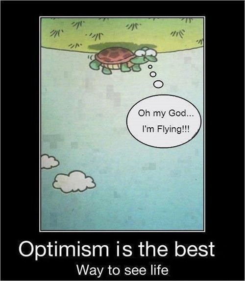 delusion optimism idiots funny - 8086679296