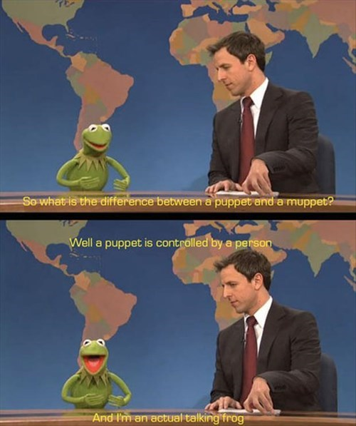 kermit the frog muppets SNL funny - 8086758656