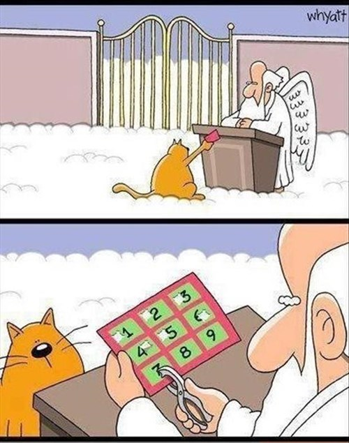 comics nine lives Cats