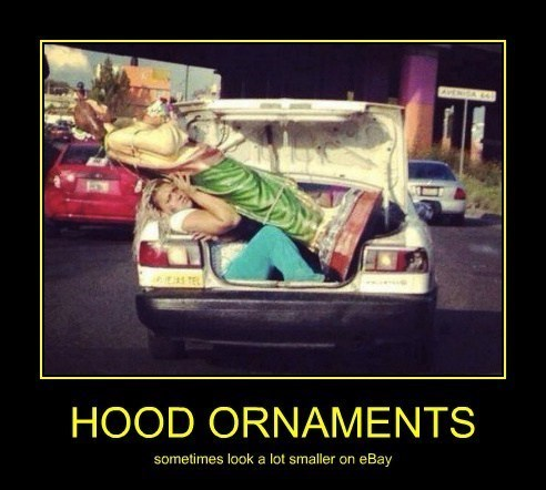 wtf,car,hood ornaments