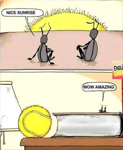 bugs comics tennis - 8089885952