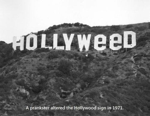 hollyweed 420 hollywood Legalize It weed