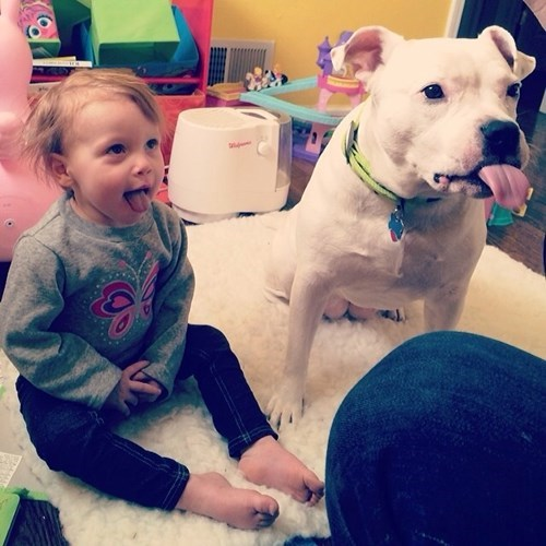 dogs,kids,cute,parenting,tongue out
