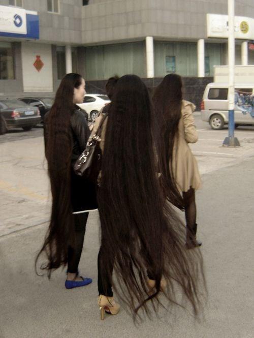 hair poorly dressed - 8090499072