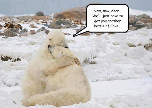 Sad polar bears coke funny - 8090512128