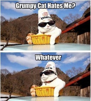 Grumpy Cat,king cat,whatever