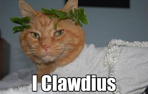 puns julius caesar Cats - 8091016192