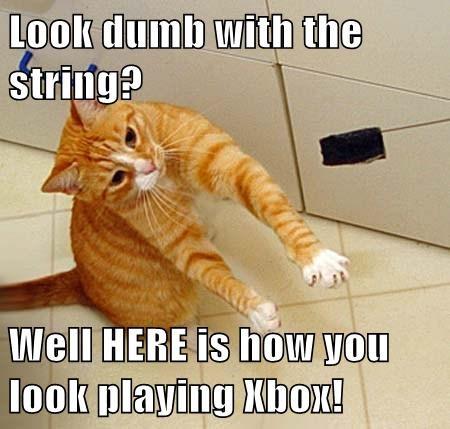 Cats funny mock xbox - 8091204352