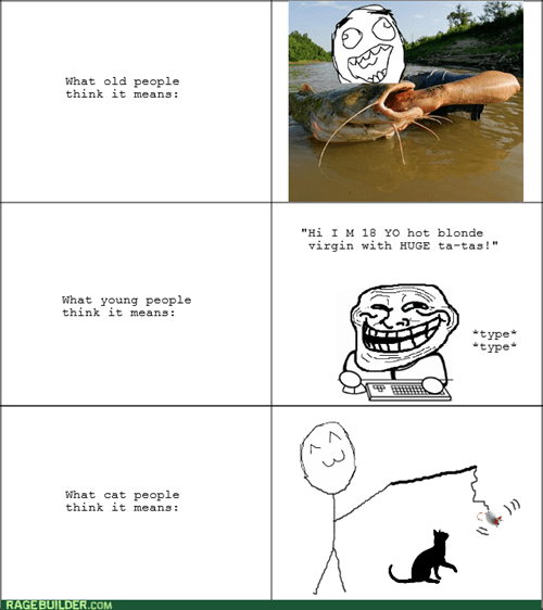 trollface catfishing Cats - 8091911424