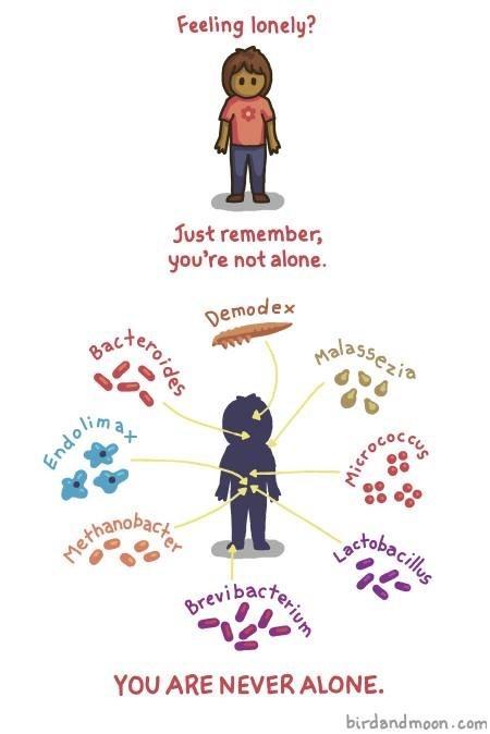 bacteria comics funny science - 8092092672