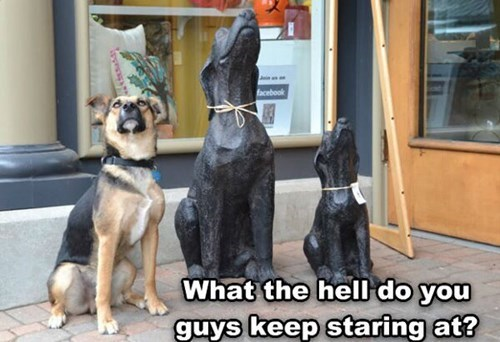 dogs funny statue - 8092335360