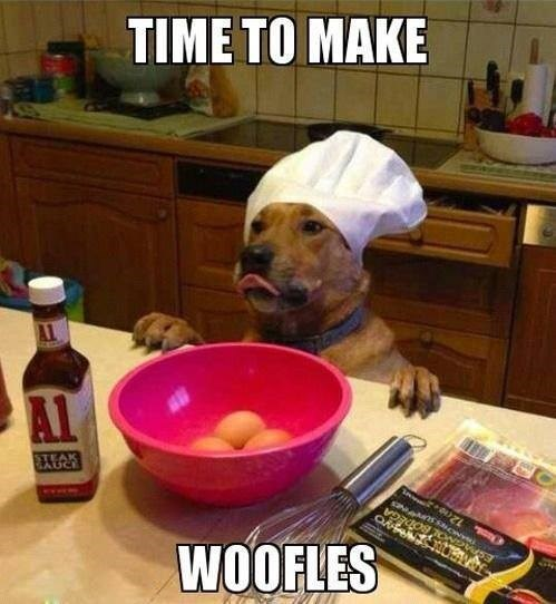 dogs cooking waffles bacon - 8092399616