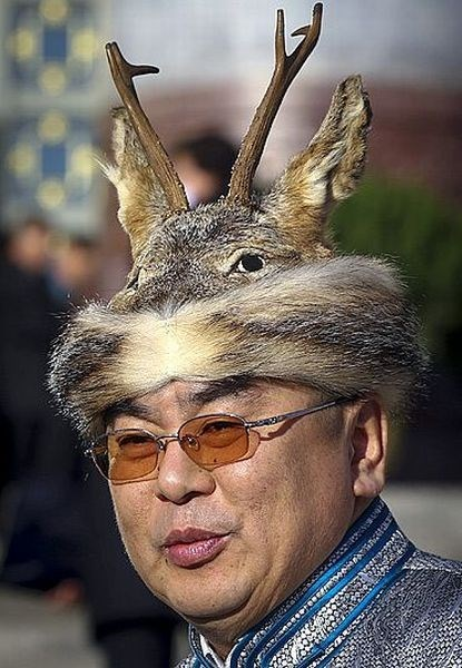 poorly dressed taxidermy hat