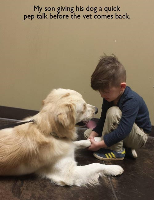 dogs,cute,Pep Talk,vet