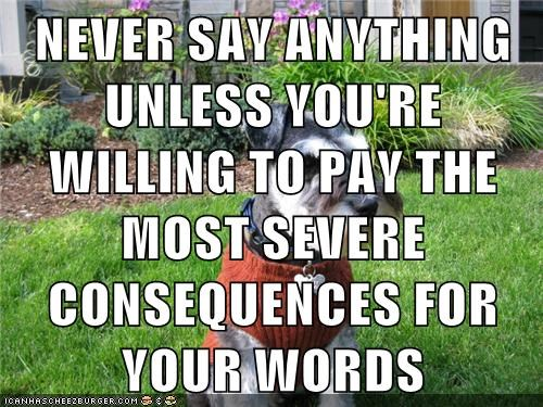 NEVER SAY ANYTHING UNLESS YOU'RE WILLING TO PAY THE MOST SEVERE CONSEQUENCES FOR YOUR WORDS