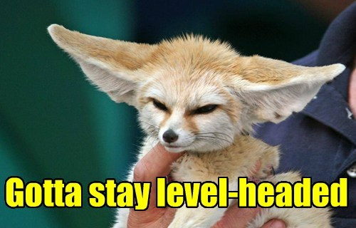 fennec fox puns cute - 8094486784