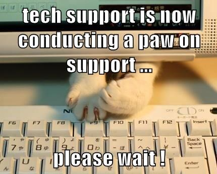 tech support puns Cats funny - 8094530560