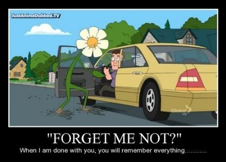 terrible forget me not memeory funny - 8094711296