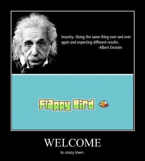 insane,flappy bird,quote,funny
