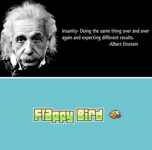 flappy bird insanity albert einstein - 8094828800