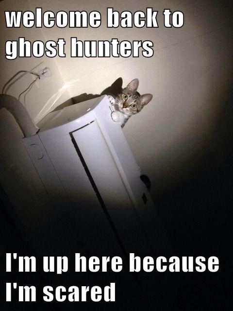 welcome back to ghost hunters I'm up here because I'm scared