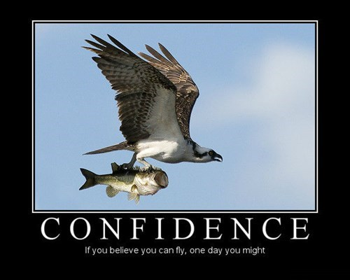 eagle confidence fish funny animals - 8094847744