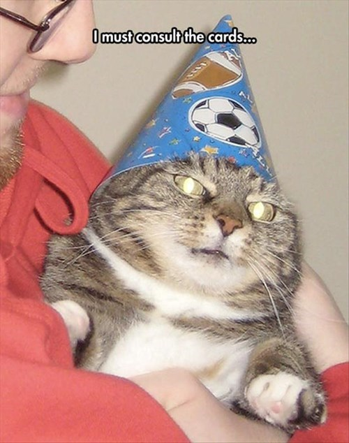 fortune teller birthday Cats magic