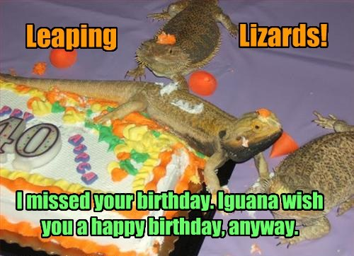 Leaping Lizards! I missed your birthday. Iguana wish you a happy birthday, anyway.