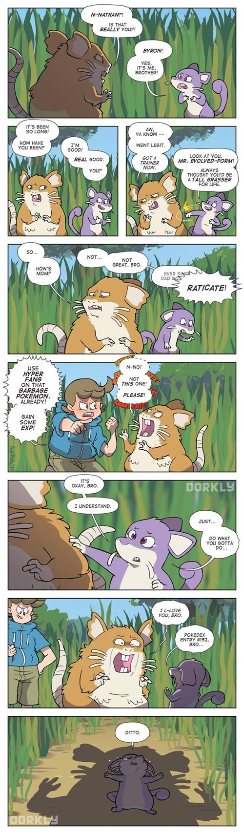 dorkly Pokémon rattata web comics
