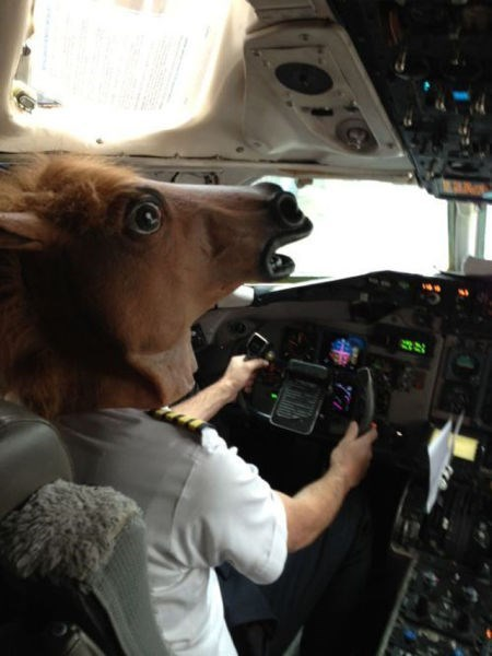 horse mask,flying,planes,pilots