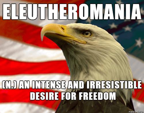freedom murica freedom eagle eleutheromania - 8096734208
