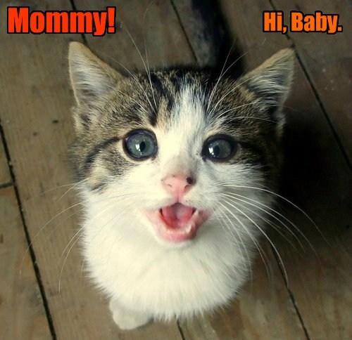 Hi, Baby. Mommy!