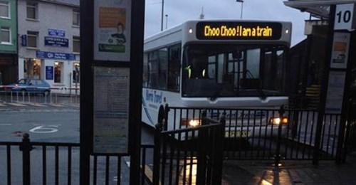 buses,choo choo