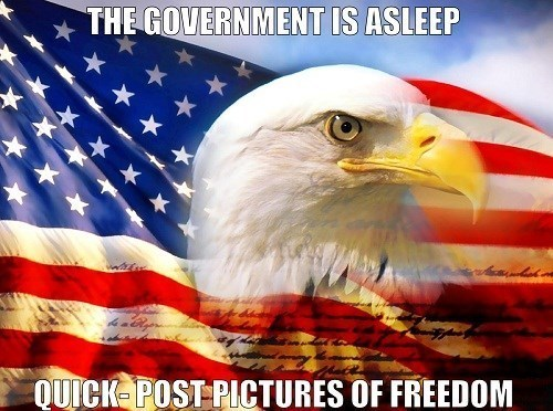 government freedom murica eagle - 8098799872