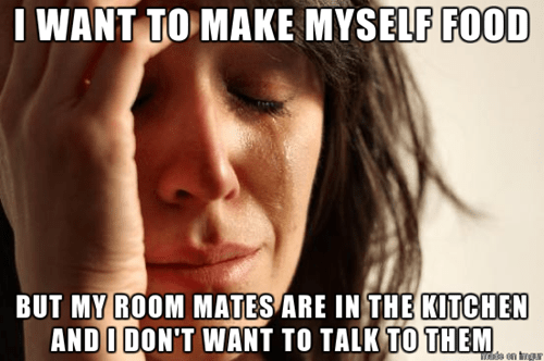First World Problems roommates - 8098839296