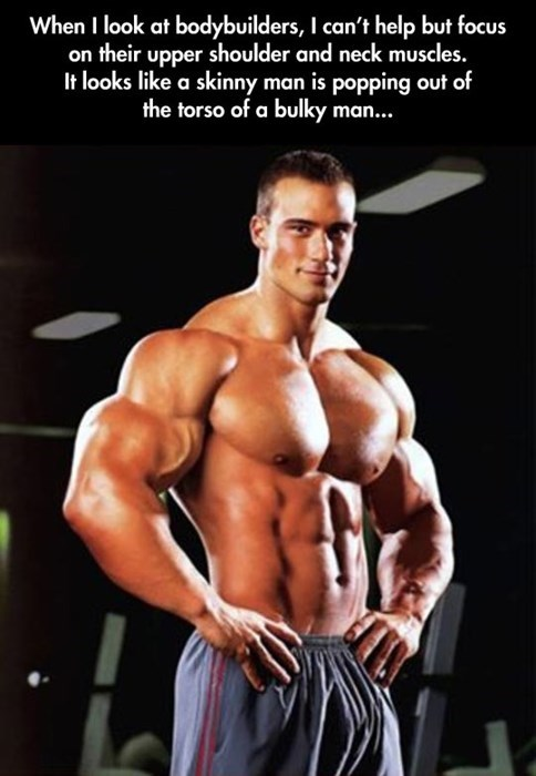 bodybuilders bros muscles - 8100366080