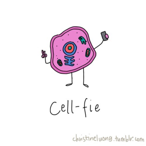 selfie cells awesome science funny - 8101123840