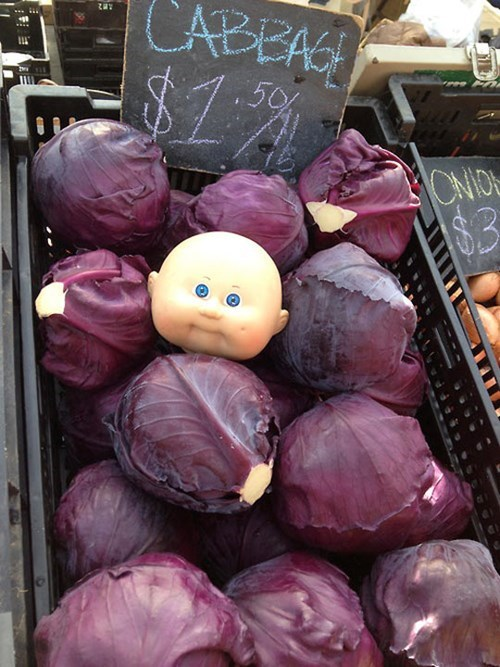 cabbage,Cabbage Patch Kids,vegetarians