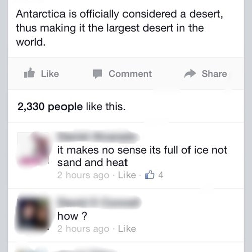 antarctica,Fun Fact,true facts