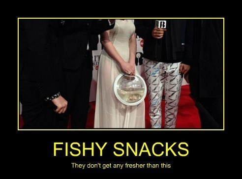 hungry wtf fish funny - 8102890496