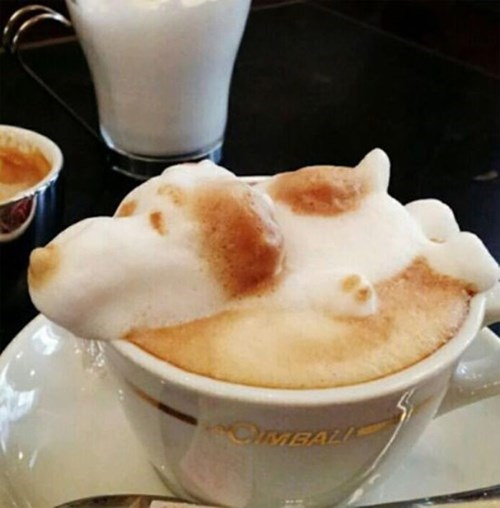 peanuts snoopy coffee latte art - 8104022016
