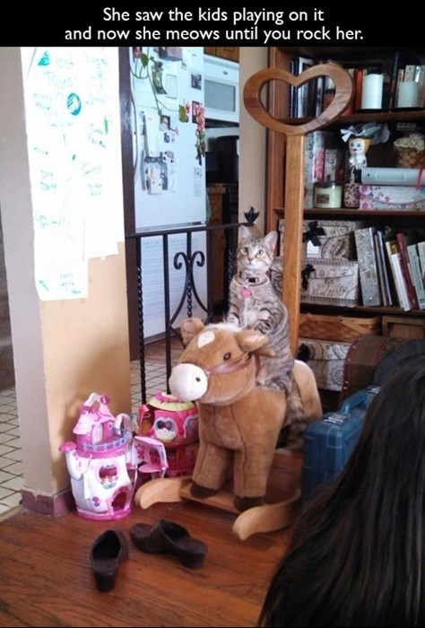 rocking horse,cute,Cats